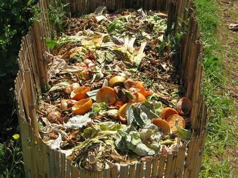 Backyard Compost Basics – Virtual
